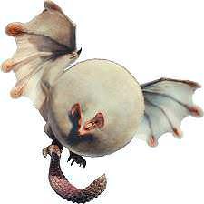 MHWorldパオウルムー 金冠